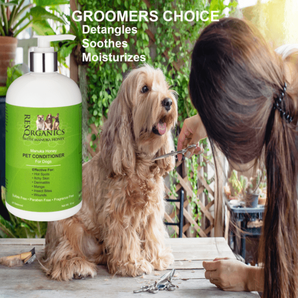 Antibacterial-dog-conditioner-for-allergies-and-itching